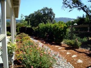 John's garden.